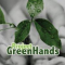 Project GreenHands