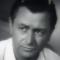 Robert Young (actor)
